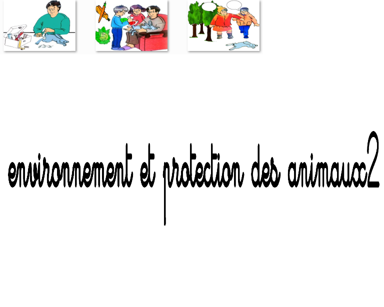 Environnement bd5