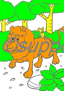 lion001